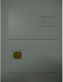 Test card Motorola
