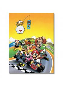 Lienzo Super Mario Kart 30x40cm